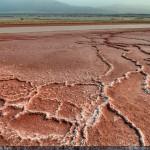 Deler av Dødehavet og strandlinja er okkupert av Israel